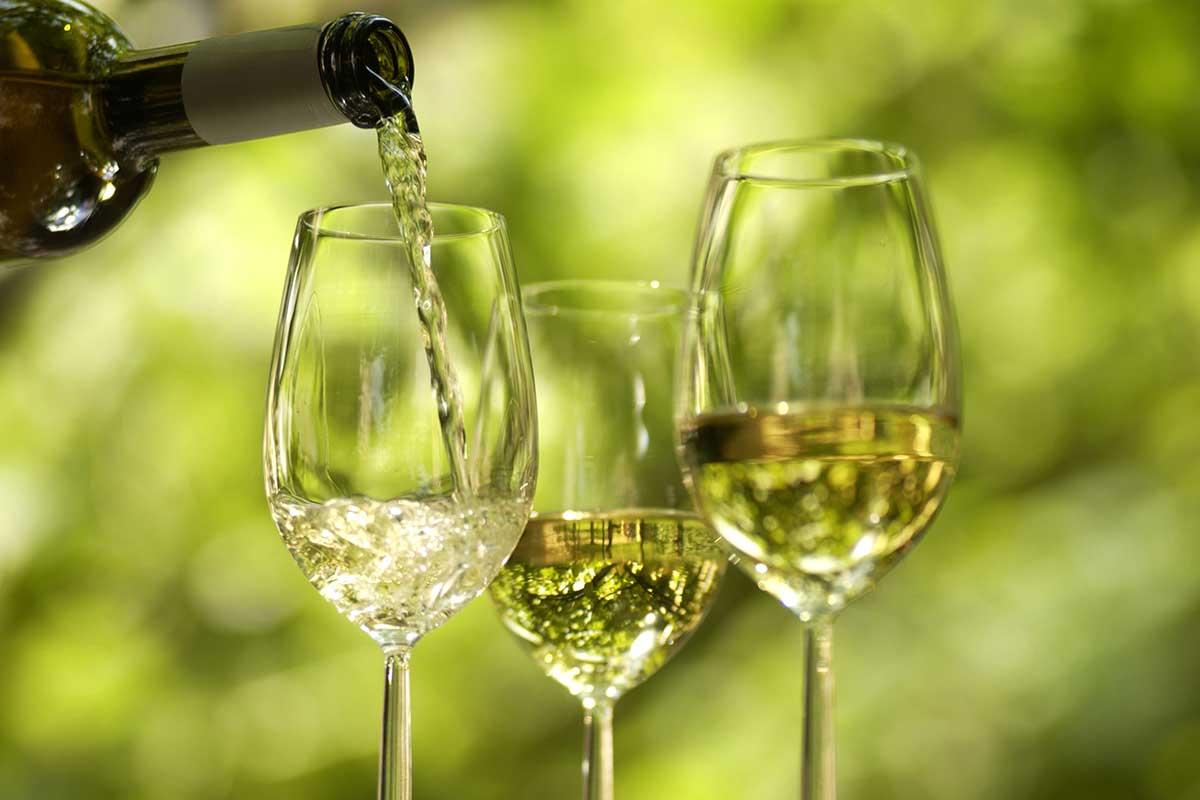 Vinho Verde - Casta Avesso