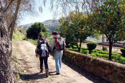 os_caminhos_jacinto_percursos